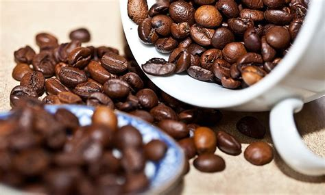 best coffee beans for press best coffee for cold brew best coffee beans for cold brew