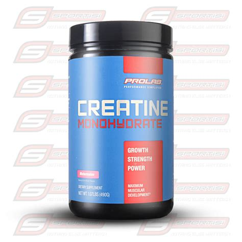 Suplemen Creatine Powder prolab creatine monohydrate 490 grams sportisi indonesia