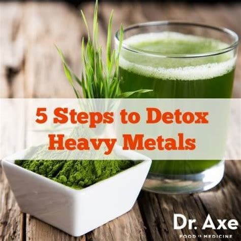 How To Detox Heavy Metals From The Brain by Heavy Metal Detox Draxe