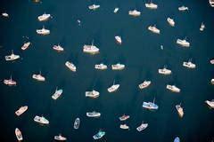 boat dealers hibbing mn alex maclean cut flower fields oceanside ca for sale