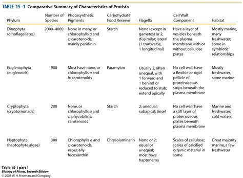 section 20 3 plantlike protists unicellular algae answers plant biology and ecological principles