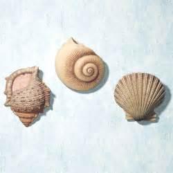 three shells bathroom three shells bathroom 28 images 3 seashells bathroom