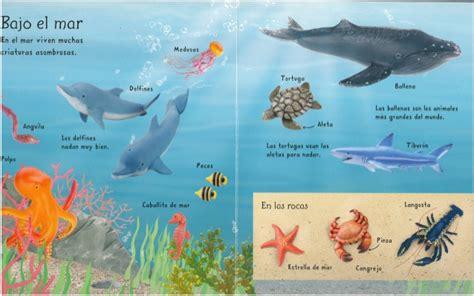 imagenes de animales que viven en el mar mi primer libro de animales ed usborne
