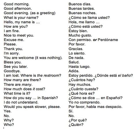 simple biography in spanish best 25 common spanish phrases ideas on pinterest
