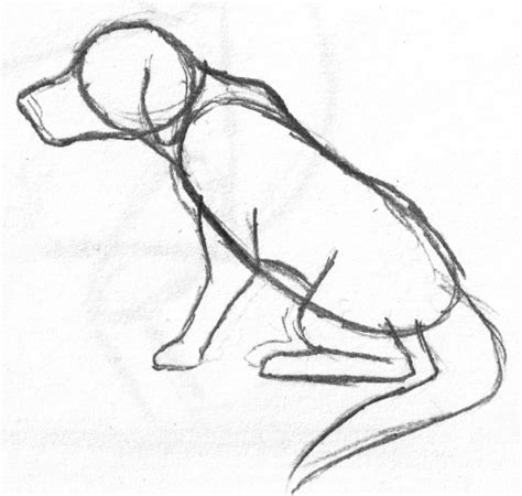 how to draw a puppy how to draw a draw central