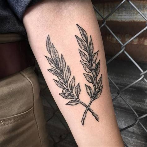 olive branch tattoo best 25 olive branch ideas on