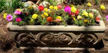 Best Place To Buy Flower Pots Flower Containers For Beginners Today S Homeowner