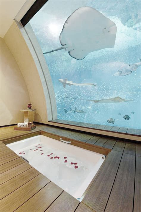 Aquarium Bathroom by Aquarium Architecture Bath Bathroom Image 739731 On