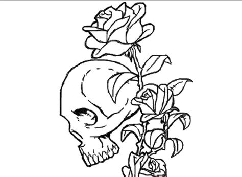 coloring pages skulls and roses skulls and roses coloring page 29726 bestofcoloring com