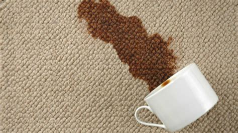 how do i clean a wool rug clean wool carpet how am i doing this correctly fresh design pedia