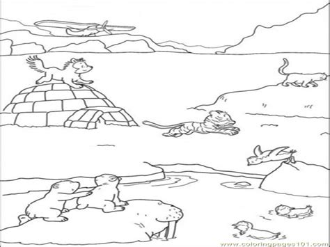 coloring pages of tundra animals arctic tundra animals coloring pages grig3 org