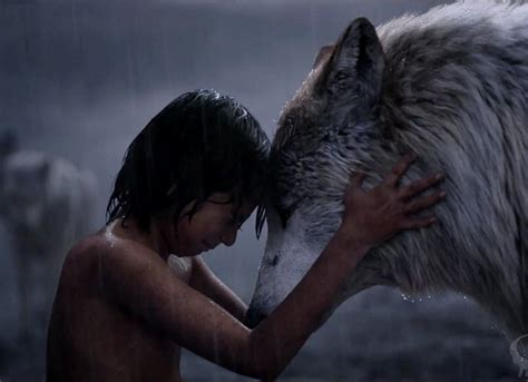 watch the jungle book 2016 full movie trailer the jungle book full movie 2016 hindi dubbed pdvdrip 700mb download sk hd movies