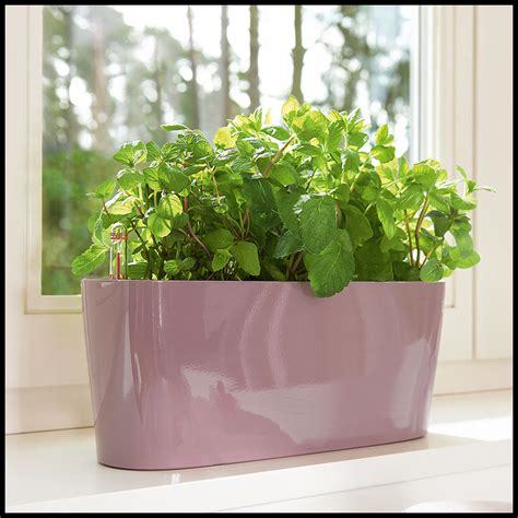 herb garden planter windowsill herb garden planter 5 colors