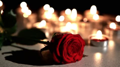 candele rosa extinguished candles with beautiful petals on black