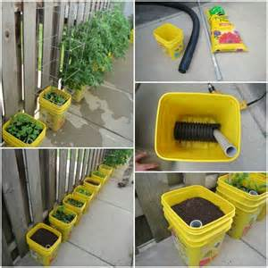 Self Watering how to make a self watering container garden usefuldiy com