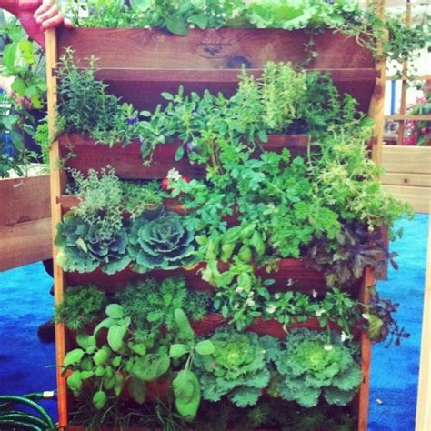 20 Vertical Vegetable Garden Ideas Home Design Garden How To Grow A Vertical Vegetable Garden