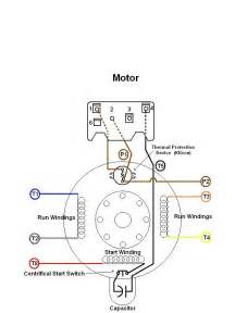 motordiagram81 wire diagrams easy simple detail ideas general exle dayton electric motor
