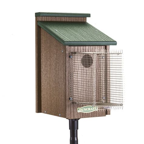 noel house duncraft com bluebird house with pole noel guard