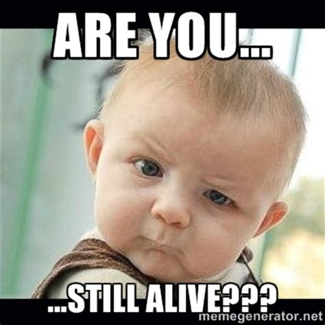 Meme You - still alive memes image memes at relatably com