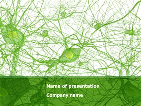 powerpoint templates free download neurons neurology powerpoint templates and backgrounds for your