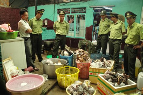 Backroom Illegal by Pangolin Scales Annamiticus