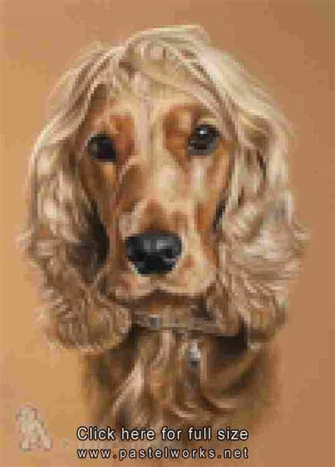 portraits berger on artists books portrait de chien epagneul cocker animalier