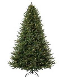 Images Of Christmas Trees Christmas Tree Bing Images