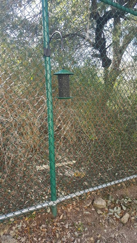 the feeder is secured to the fence with zip ties the