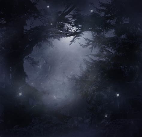 mystical images mystical forest stock by wyldraven on deviantart