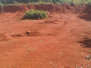 Tanah Merah Untuk Arugan tanah merah untuk penambakan