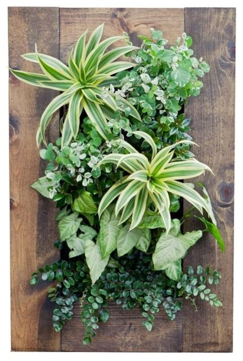 Vertical Wall Planters by Grovert Vertical Wall Planter Multicolor Bg 20