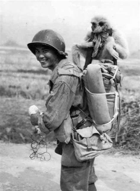 10 fotos de la Segunda Guerra Mundial que no encontrarás