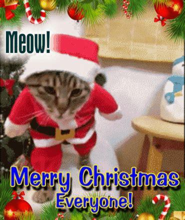 christmas eve gif find share  giphy