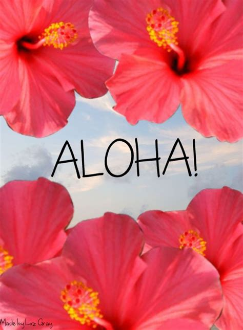 wallpaper tumblr aloha aloha wallpaper wallpapersafari