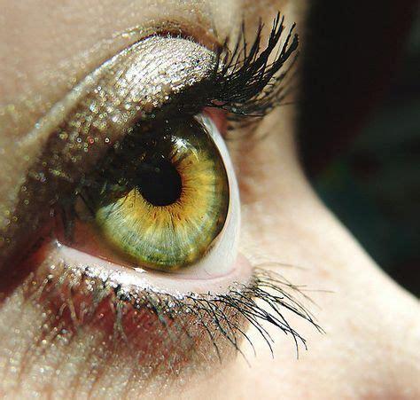 rarest eye color chart 25 best ideas about rarest eye color on eye