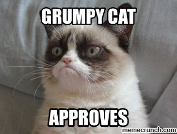 Grumpy Cat Coma Meme - place to post any random pics lets see what you can come