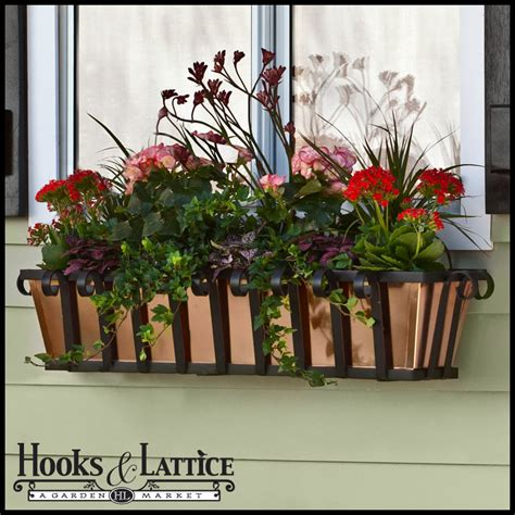 Wrought Iron Window Boxes Planters by Venetian Wrought Iron Window Planter Boxes Hooks Lattice