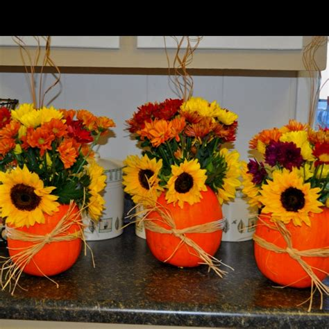 43 best pumpkin flowers images on pinterest sunflowers