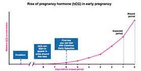 wann sind die ersten anzeichen einer schwangerschaft was sind die ersten anzeichen einer schwangerschaft
