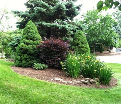 best 20 curb appeal landscaping ideas on