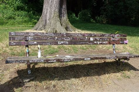 kurt cobain bench the bench outside kurt cobain s home picture of stalking