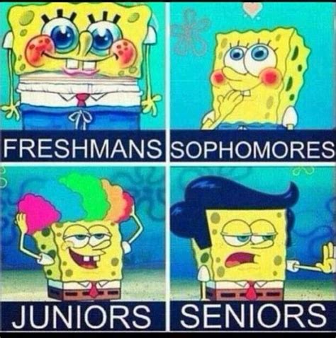 Hilarious Spongebob Memes - 163 best spongebob images on pinterest spongebob funny