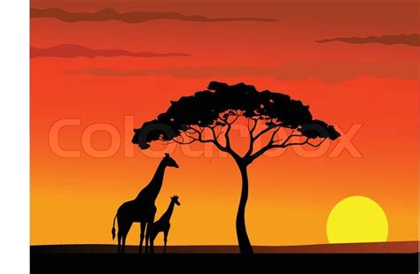 House Pla by Safari Africa Sunset Background Stock Vector Colourbox
