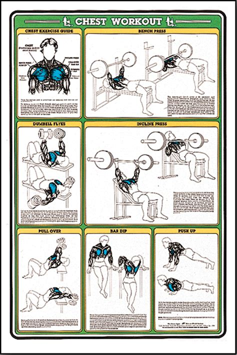 best bench routine chest workouts workouts pinterest workout exercises