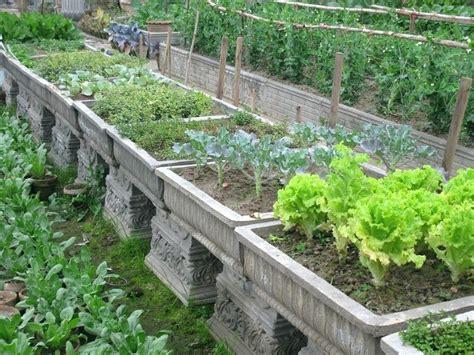 amazing of container vegetable garden plans stunning vegetable garden container ideas container gardening
