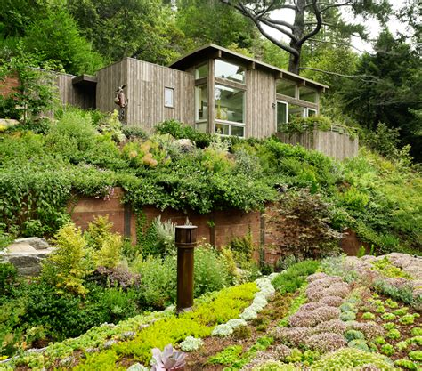 family garden sf feldman architecture mill valley cabins in san francisco