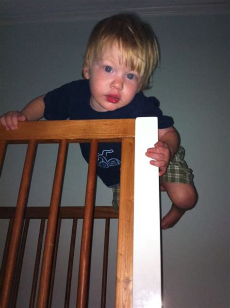 Child Climbing Out Of Crib crib tents are recalled and we re emotionally unstable the bird diaries