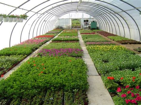 horticulture practices and the therapy follow green living