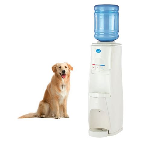 Water Dispenser For Dogs Hduo Water Dispenser For And Pets The Green