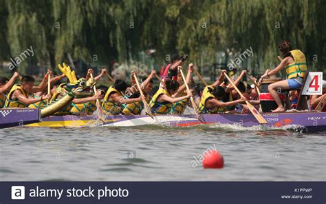 the hong kong dragon boat festival in new york coterie stock photos coterie stock images alamy